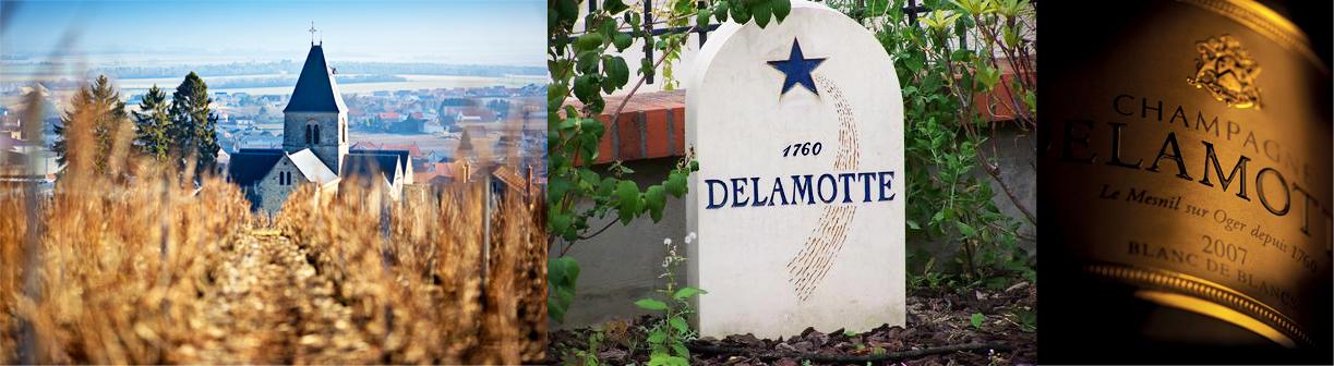 Champagne Salon vineyard, Champagne Delamotte garden stone, Champagne Delamotte 2007