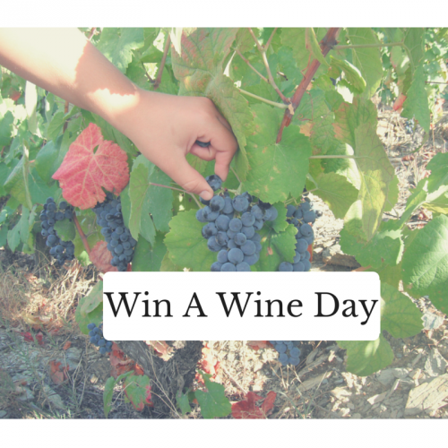 Win A Wine Day