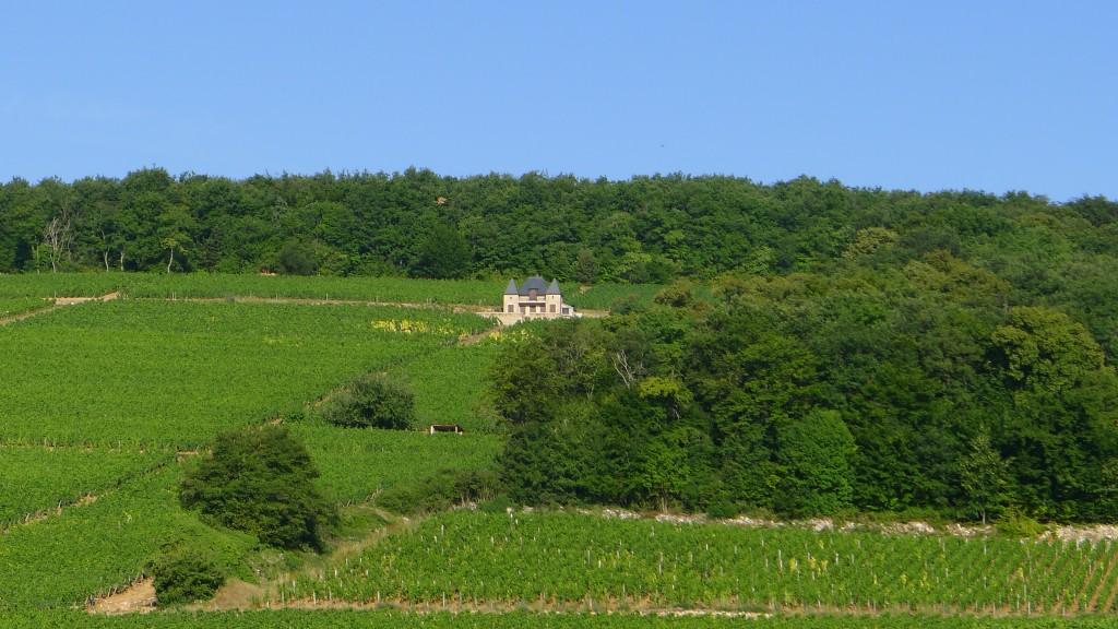 burgundy-july-2011-137