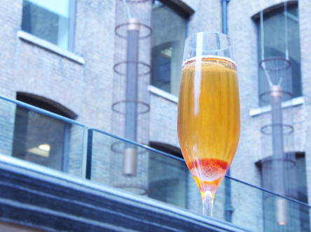 classic_champagne cocktail