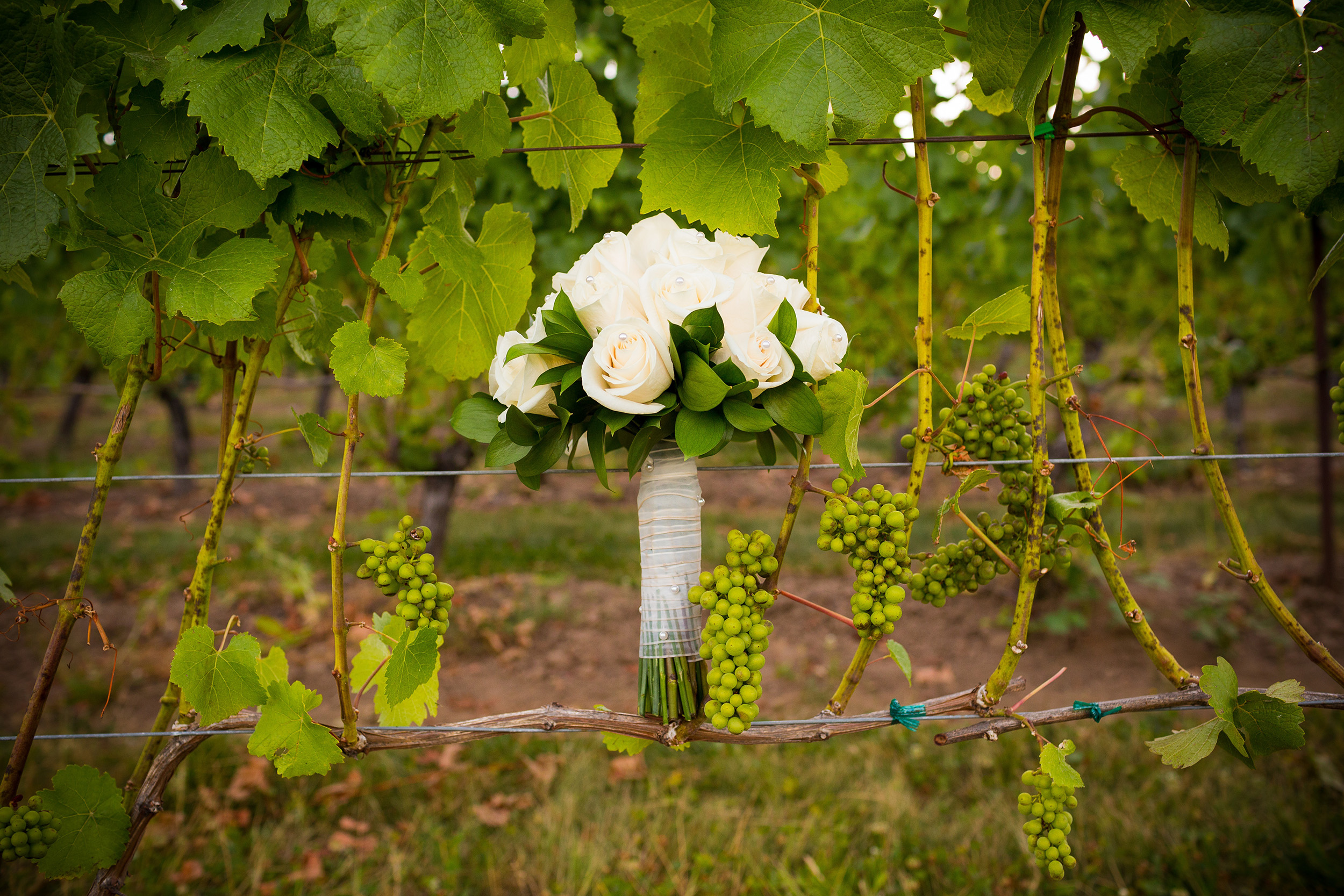 Your wedding wine checklist