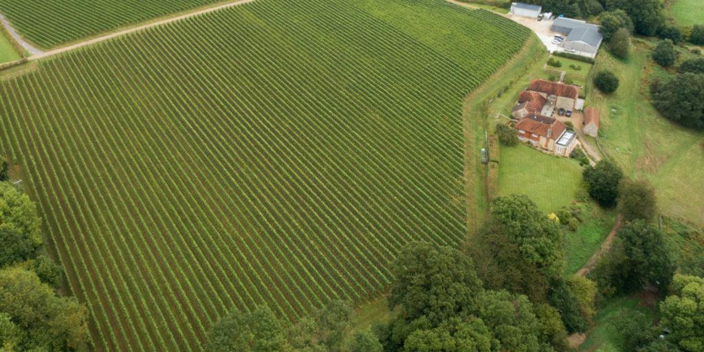 Ambriel Winery