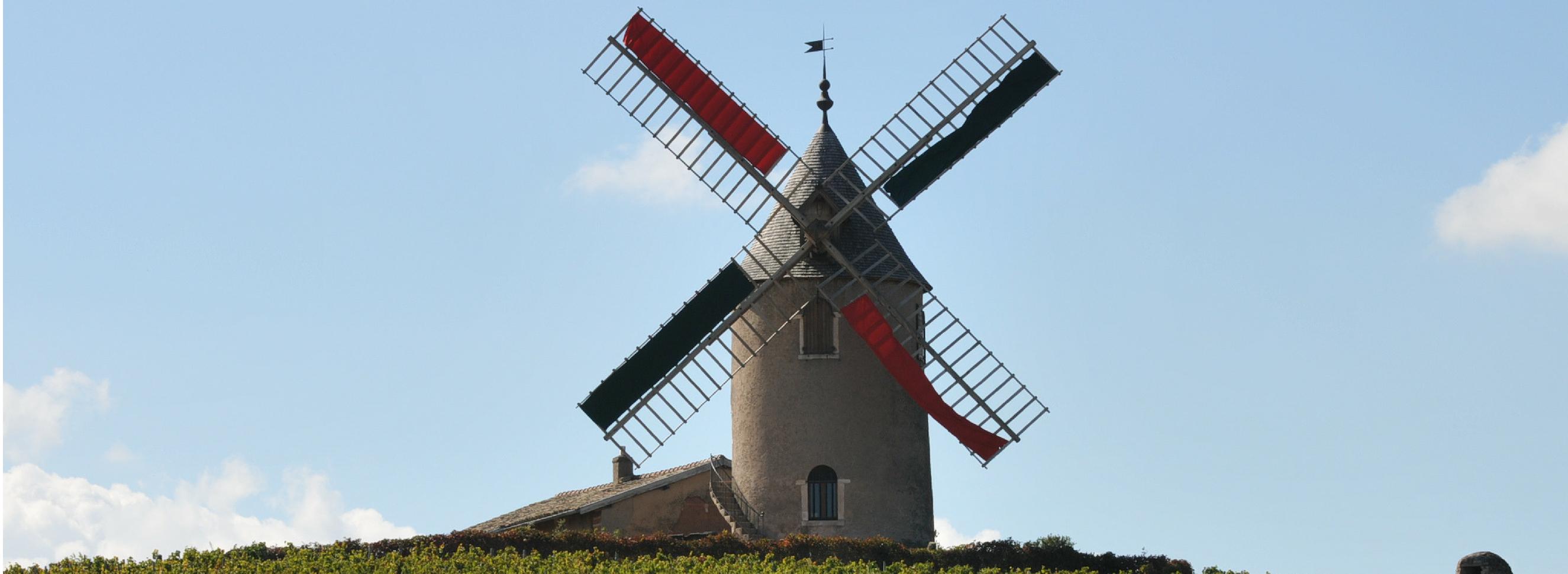 Domaine Labruyère: Moulin-à-Vent since 1850