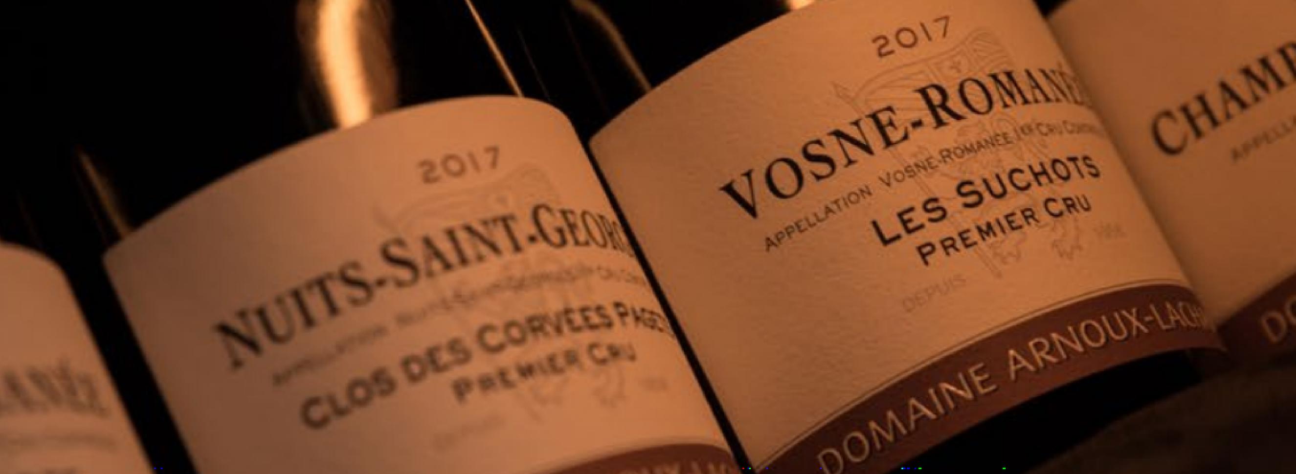 Domaine Arnoux-Lachaux: A year on