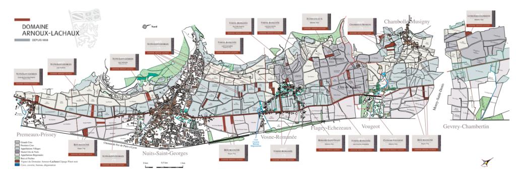 Domaine Arnoux-Lachaux vineyards